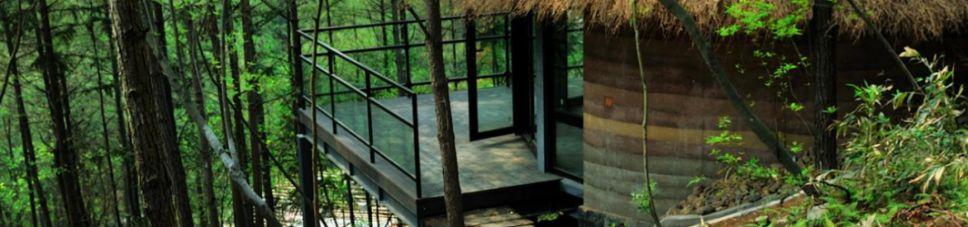 樹屋、樹頂別墅